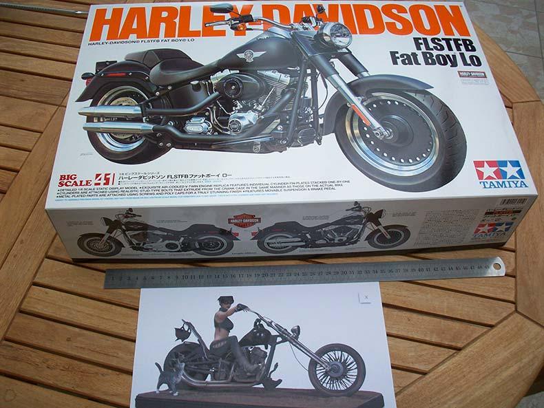 Harley Girl 0
